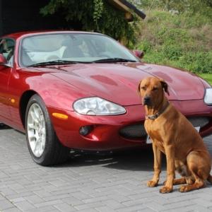 Jaguar XKR 4.0 V8 supercharged